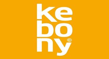 Eine Kebony-Terrasse macht dauerhaft Freu(n)de!